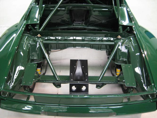 Nelson - 11 Rear Cage View